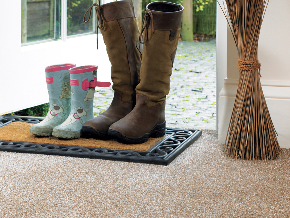 Abingdon Stainfree Twist Carpet
