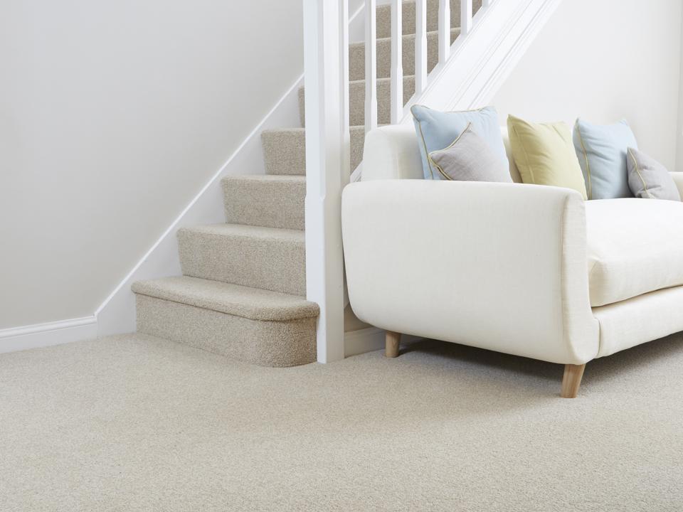 bingdon Carpet