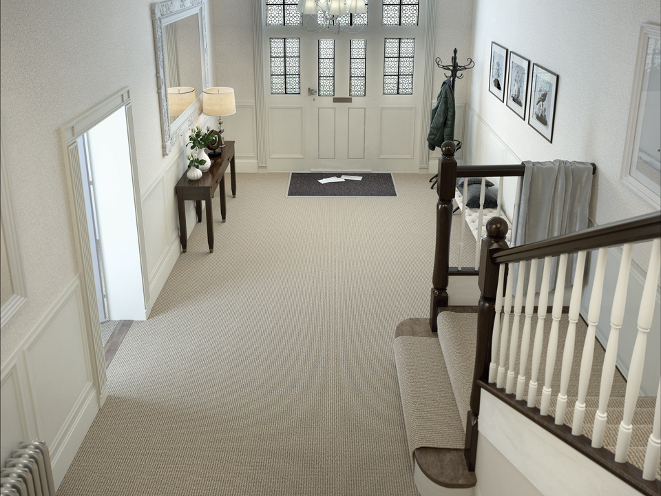 Axminster Simply Natural Carpet 2
